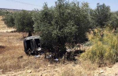 vehiculo-chocado-contra-un-olivo