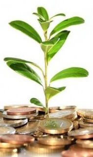 En qué invertir mi dinero para alcanzar la libertad financiera